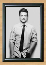 Josh Hutcherson The Hunger Games Photo Print Poster Home Decor A4 297x210mm Wall