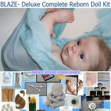 BLAZE, Complete STARTER KIT FOR MAKING REBORN DOLL, DVD, PAINT, MOHAIR, EYES
