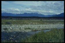 036023 campo di lupini e meridionali Alpi sud isola A4 FOTO STAMPA