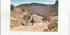 BF17631 algeria les gorges de la chigga hotel restaurant la cta front/back image
