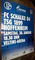 Spielplakat + Poster + FC Schalke 04 vs TSG Hoffenheim + 30.01.2010 + Sammler +