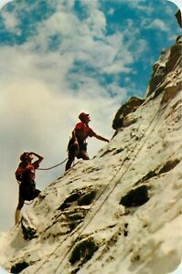 Disneyland Postcard PDL-31; Matterhorn Mountain Climbers, Unposted Hallmark Rare