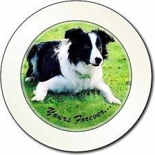 "Border Collie Dog ""Yours Forever..."" Car/Van Permit Holder/Tax Disc G, AD-CO69yT"
