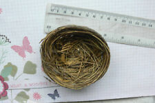 Grass Birds NEST 8-9cm Across x 3.5cm Deep - Decorative Use - Touch of Nature