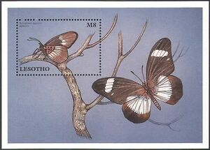 Lesotho 1997 Butterfly/Butterflies/Insects/Nature/Conservation 1v m/s (b569)