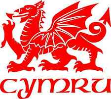 Welsh Dragon Car Camper Van Window Bumper Sticker  Decal