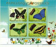 FARFALLE & FOSSILI - BUTTERFLIES & FOSSILS CONGO 2007