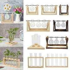 Transparent Glass Vase Flower Plant Hydroponic Bonsai Test Tube Vase+Wooden Tray
