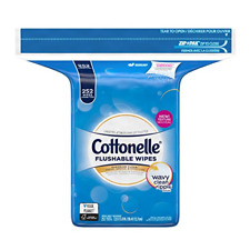 Cottonelle Flushable Wet Wipes, 252 Wipes per Pack