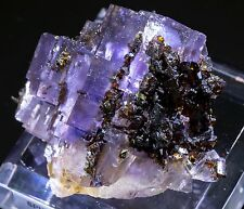 Sphalerite on Fluorite Mineral Specimen from Denton Mine, Cave-in-Rock, Illinois