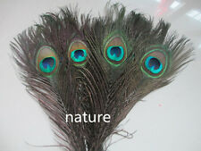 Free Shipping 10pcs beautiful natural peacock feather eye 10-12 inch / 25-30 cm