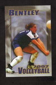Bentley Falcons--2002 Volleyball Pocket Schedule