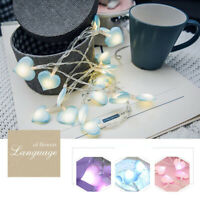 10/20 LED String Fairy Lights Heart Shaped Wedding Party Lamp Bedroom Home Decor