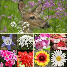 Bulk Package of 30,000 Seeds, Deer Resistant Wildflower Mixture 100% Pure Live …