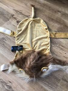 Dogs Dressing Up Outfit  Lion Size M Pets At Home