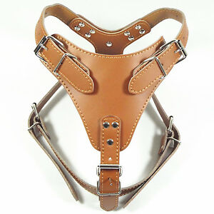 NEW Brown Soft Plain Leather Dog Pet Harness Chest for 21~30 inches