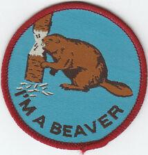 Boy Scout Badge I`m a Beaver