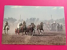 Chuckwagon Racing Cheyenne Wyoming WY Postcard ID#702