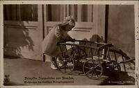 Adel Monarchie ~1917 Prinzessin Alexandrine von Preußen als Kind mit Bollerwagen