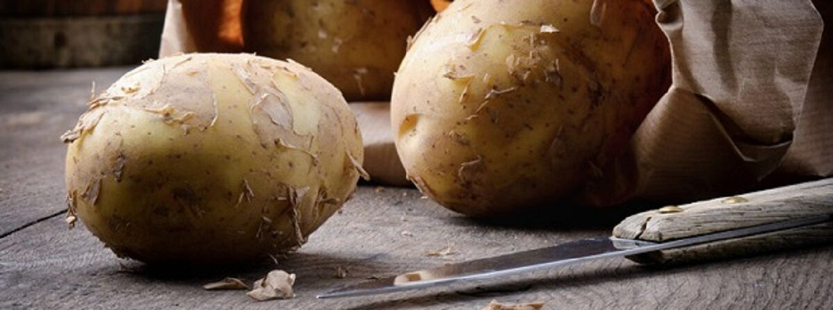 Patch Seed Potatoes