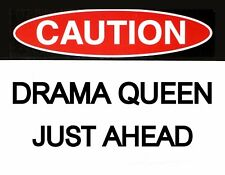 METAL MAGNET Caution Drama Queen Just Ahead Family Friend Humor MAGNET