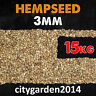 15kg Hemp Seed (Standard Size) For Wild Bird Feed & Carp Fishing
