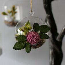 Brand New Ancient Wisdom All GlassTerrarium -Globe Hanging Bowl Home Decor
