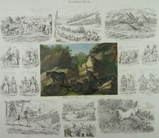 RUSSLAND RUSSIA KAMTSCHATKA KRIM WOLF ELCH GRAPHIK 1850 E12