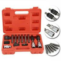 13 Pc Alternator Freewheel Pulley Car Garage Tool Kit Hex Spline Star Bits