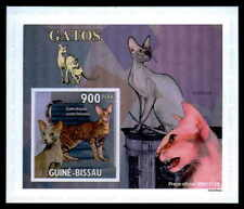 GUINEA-BISSAU EPREUVE DE LUXE KATZEN KATZE CATS CAT CHAT GATO DELUXE SHEET dr63