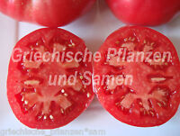 🔥 Caspian pink Tomate pink Fleischtomate Russland 10 frische Samen Balkon Kübel