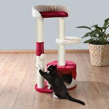 Arbres rouges à chat et griffoirs pour chat
