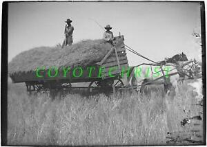 1890s Glass Plate Negative HORSE DRAWN HAY CART Harvest Crew MIDWEST / KANSAS