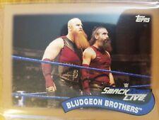 2018 Topps WWE Heritage #TT-8 Bludgeon Brothers BRONZE #d 38/99