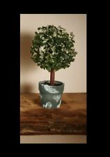 Gardman Artificial Mini Tree in Frosted Pot's Home Indoor Decoration
