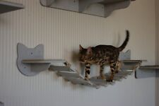 Cat shelves bridge Cat Bridge Cat wall furniture Cat shelves wall Cat furniture
