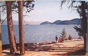 Montana Postcard FLATHEAD LAKE Shore Pines Islands Park Northwest Curio 1960s