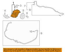 GM OEM-Power Steering Pump 15221010