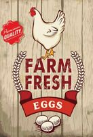 Farm fresh Eggs Blechschild Schild gewölbt Metal Tin Sign 20 x 30 cm