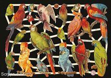 German Victorian Style Embossed Scrap Die Cut - Colorful Majestic Birds   EF7303