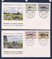 ASg/ Sénégal  enveloppe  1er jour   animaux  poissons  1966