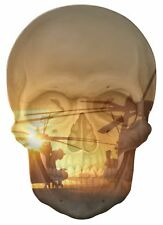 Gothic Skull Double Exposure Army Fighter Helicopters View Sticker Mural 913