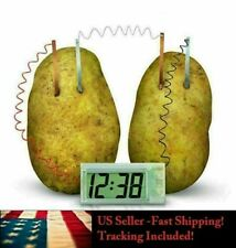 Potato Clock DIY Science Experiment Kit Green Battery Home School Project