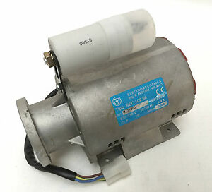 Cimbali 5011862  Motor Pump, Electric, 220 - 240V 50 / 60hz