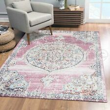 Beccles Medallion Boho Pink Transitional Oriental Rug - 4 Sizes **NEW**