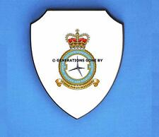 ROYAL AIR FORCE 5 FORCE PROTECTION WING WALL SHIELD (FULL COLOUR)