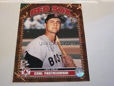 Carl Yastrzemski Boston Red Sox 8x10