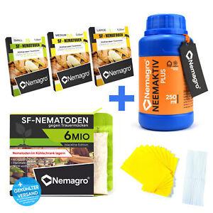 NEMAGRO® SF Nematoden gegen Trauermücken + Neemöl Neemaktiv 250ml + Gelbtafeln