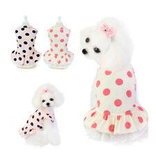 Pet Cat Cute Supplies Summer Wave Point Dog Clothes Pet Dress Lace Skirt Dress