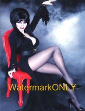 "Cassandra Peterson ""Elvira"" ""Mistress of the Dark"" SEXY ""Pin-Up"" PHOTO! #(59)"